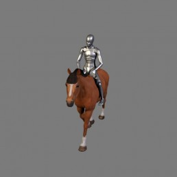 Home - The Motion Capture Library